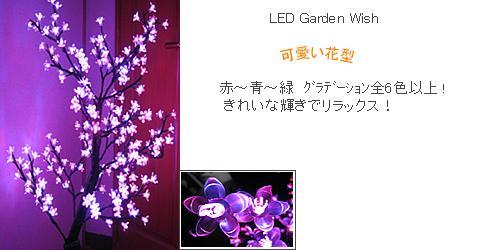 garden01-fw