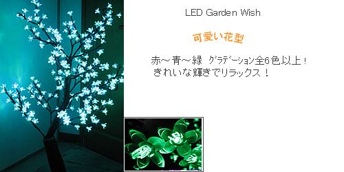 garden02-fw